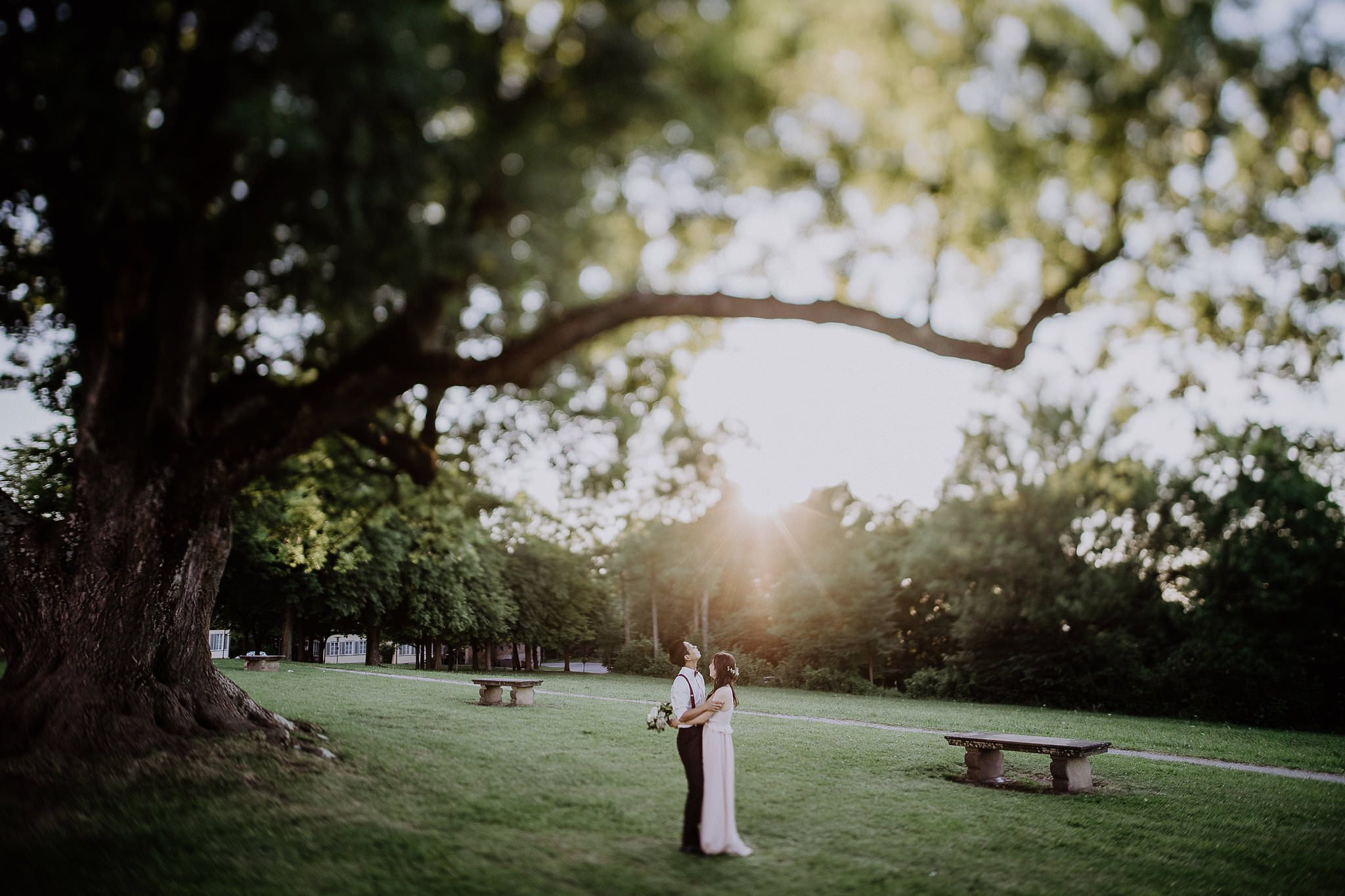 wedding photographer hamilton new zealand 1015 6