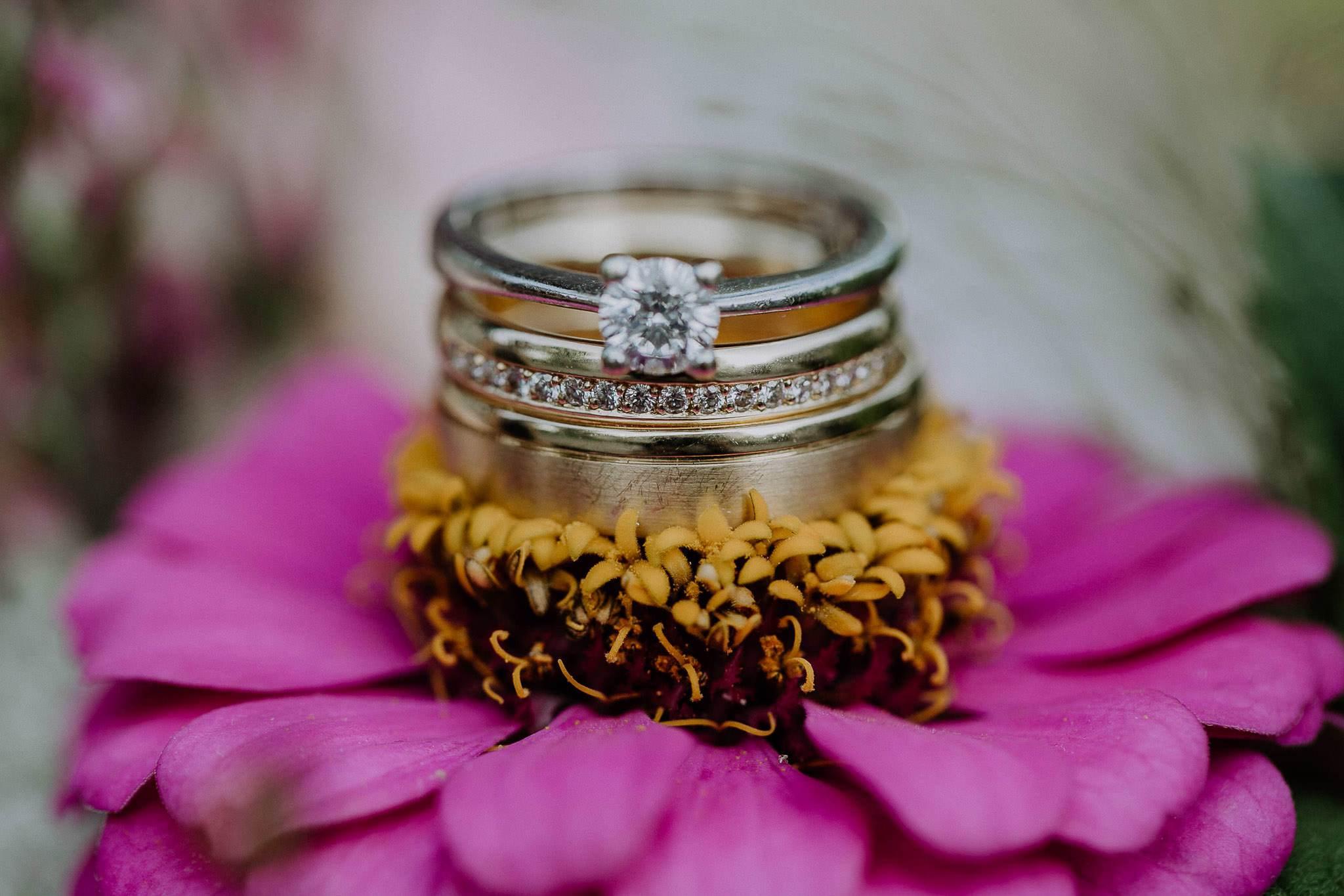 wedding photographer hamilton new zealand 1063 2