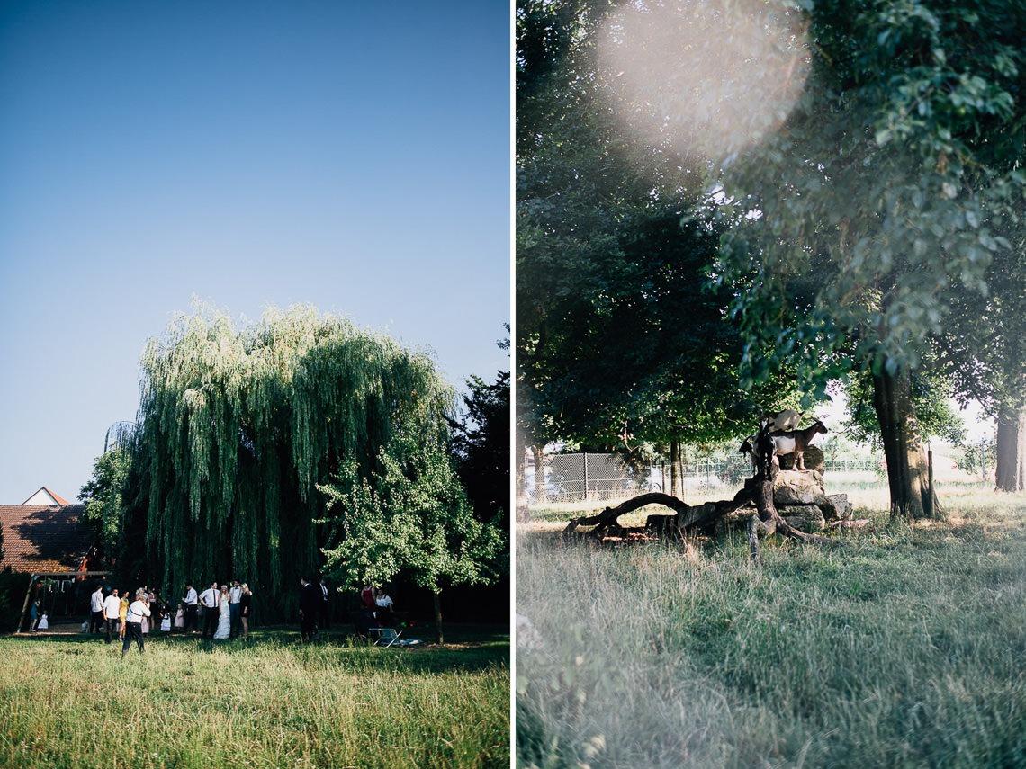 wedding photographer hamilton new zealand 1068 3